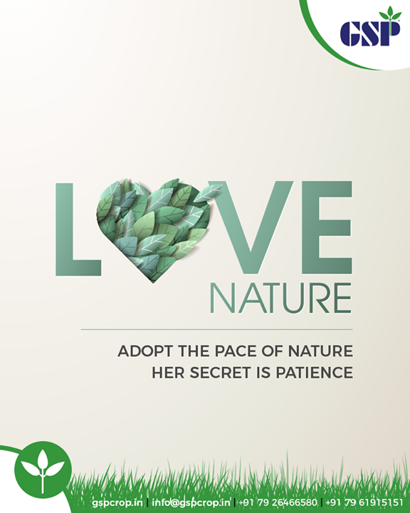 Don't be mean, go green.  #LoveNature #GoGreen #GSPCropSciencePrivateLimited #GSP #GSPCrops #GSPCropsScience #Insecticides #Fungicides #Herbicides #PlantGrowthRegulators #Agriculture